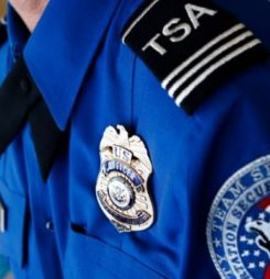 TSA reviewing cargo screening